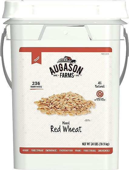 Augason Farms Regular Rolled Oats Pail by Augason Farms 10-lb