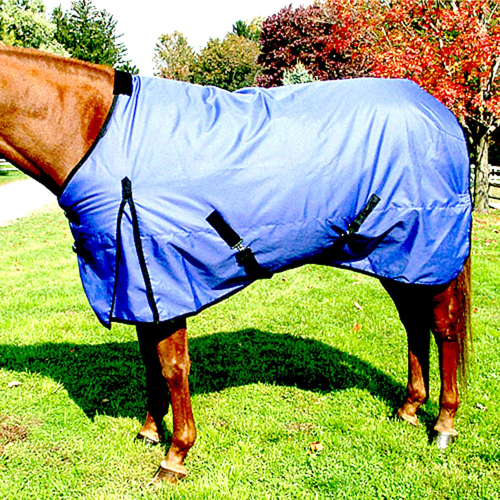 Intrepid International Free Runner Mid Weight Turnout Blanket, 77-Inch, Royal Blue