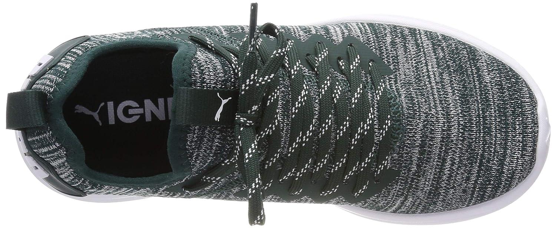 Puma Ignite Flash Evoknit Wn's, Scape per Sport Outdoor Donna Donna Donna | In Linea  93abb3