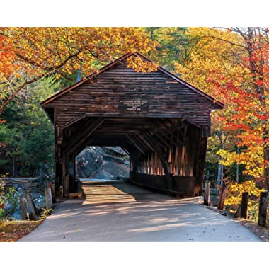White Mountain Puzzles 1117 Albany Covered Bridge, 1000 Piece Jigsaw Puzzle