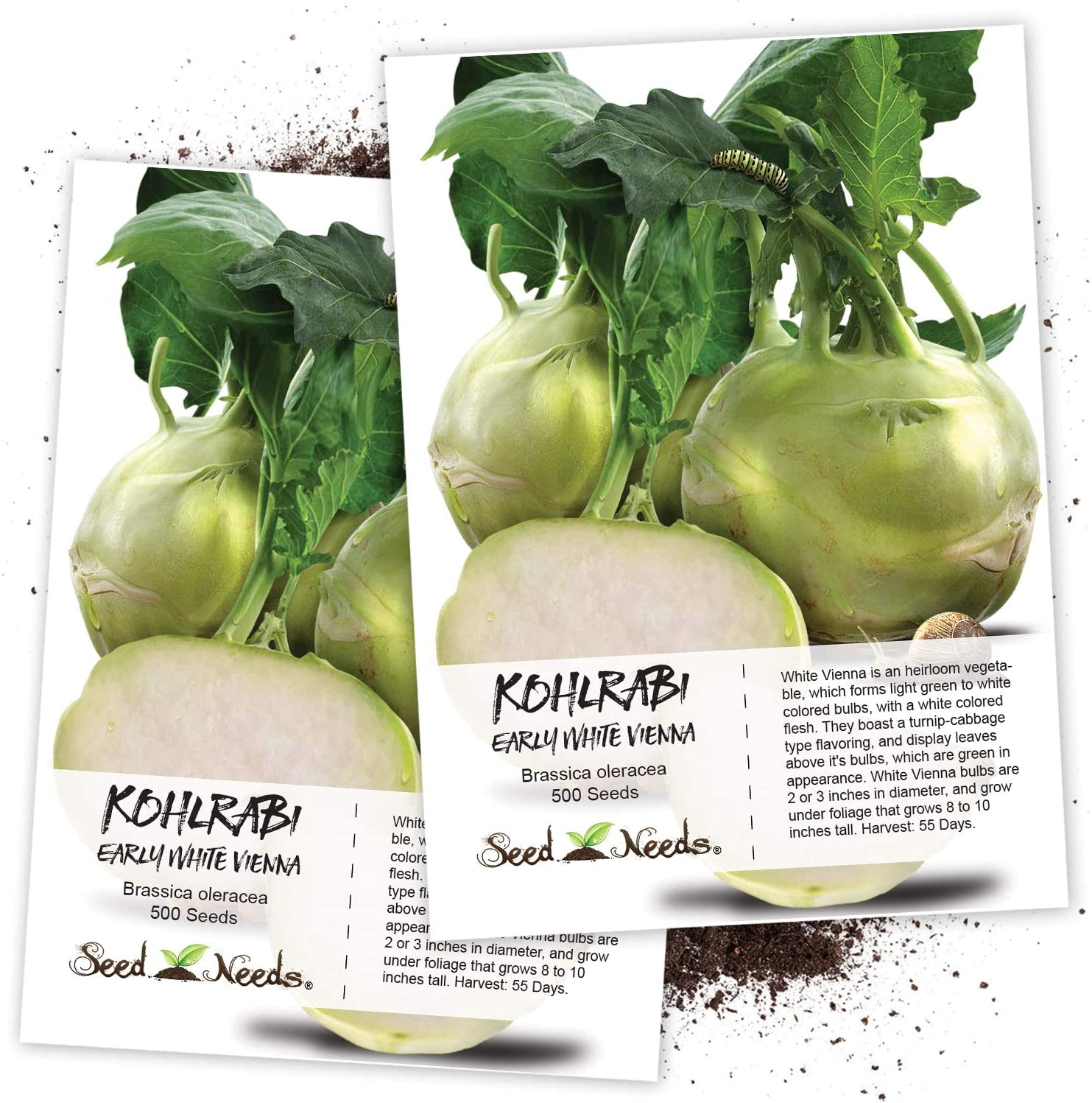 Amazon Com Seed Needs Early White Vienna Kohlrabi Brassica Oleracea Twin Pack Of 500 Seeds Each Non Gmo Vegetable Plants Garden Outdoor