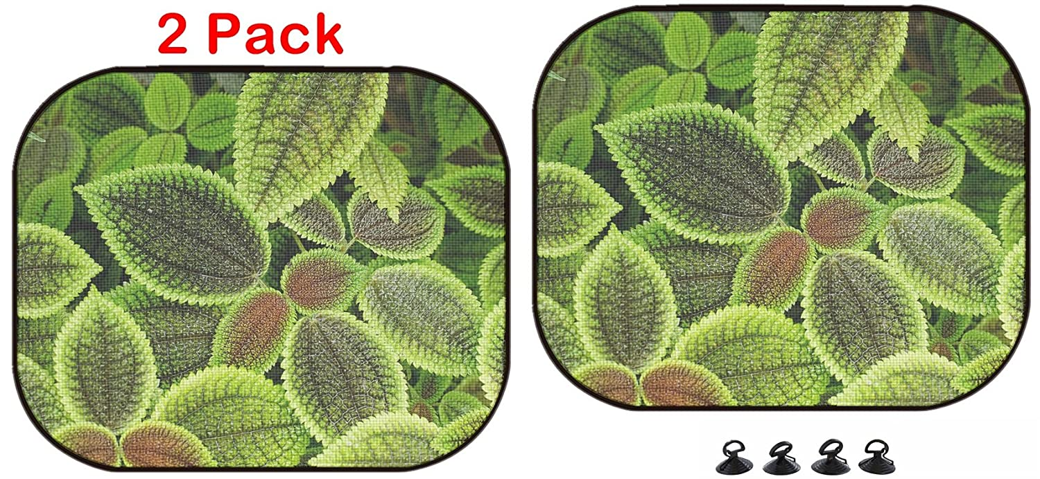 2 Pack Image ID Luxlady Car Sun Shade Protector Block Damaging UV Rays Sunlight Heat for All Vehicles 22343343 Colored Leaves Forest