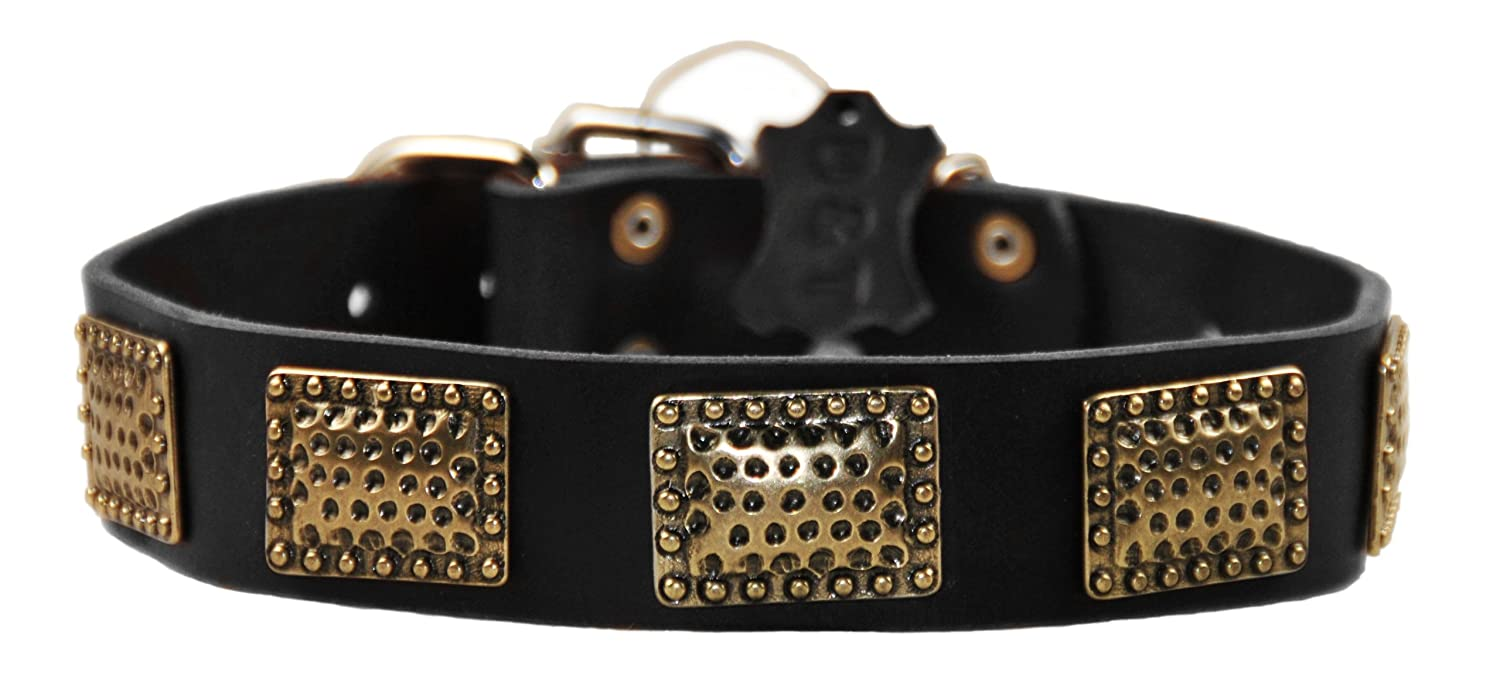Dean and Tyler DRUM ROLL , Leather Dog Collar with Hammered Brass Plated Plates  Black  Size 36Inch by 11 2Inch  Fits Neck 34Inch to 38Inch