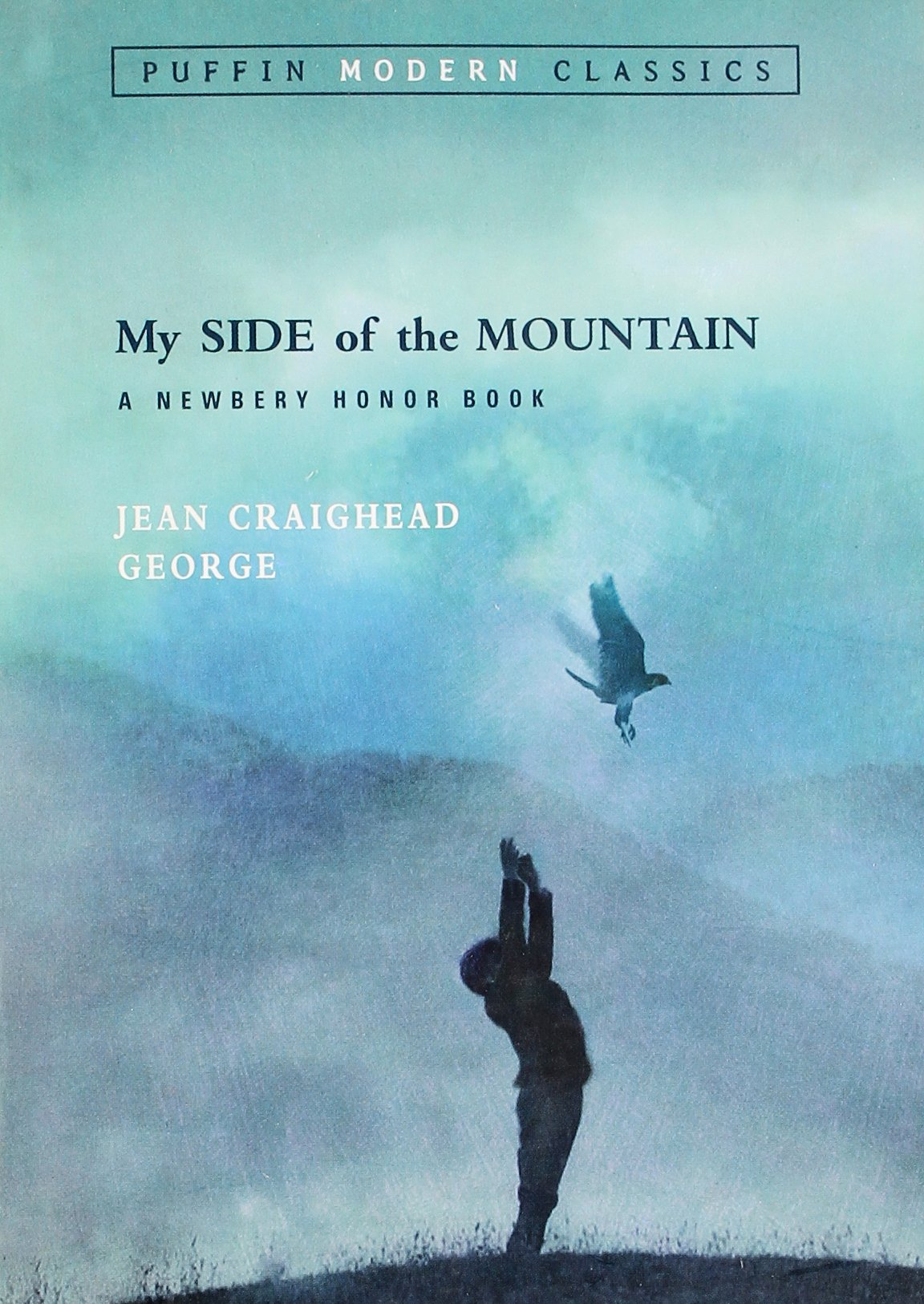 Image result for my side of the mountain
