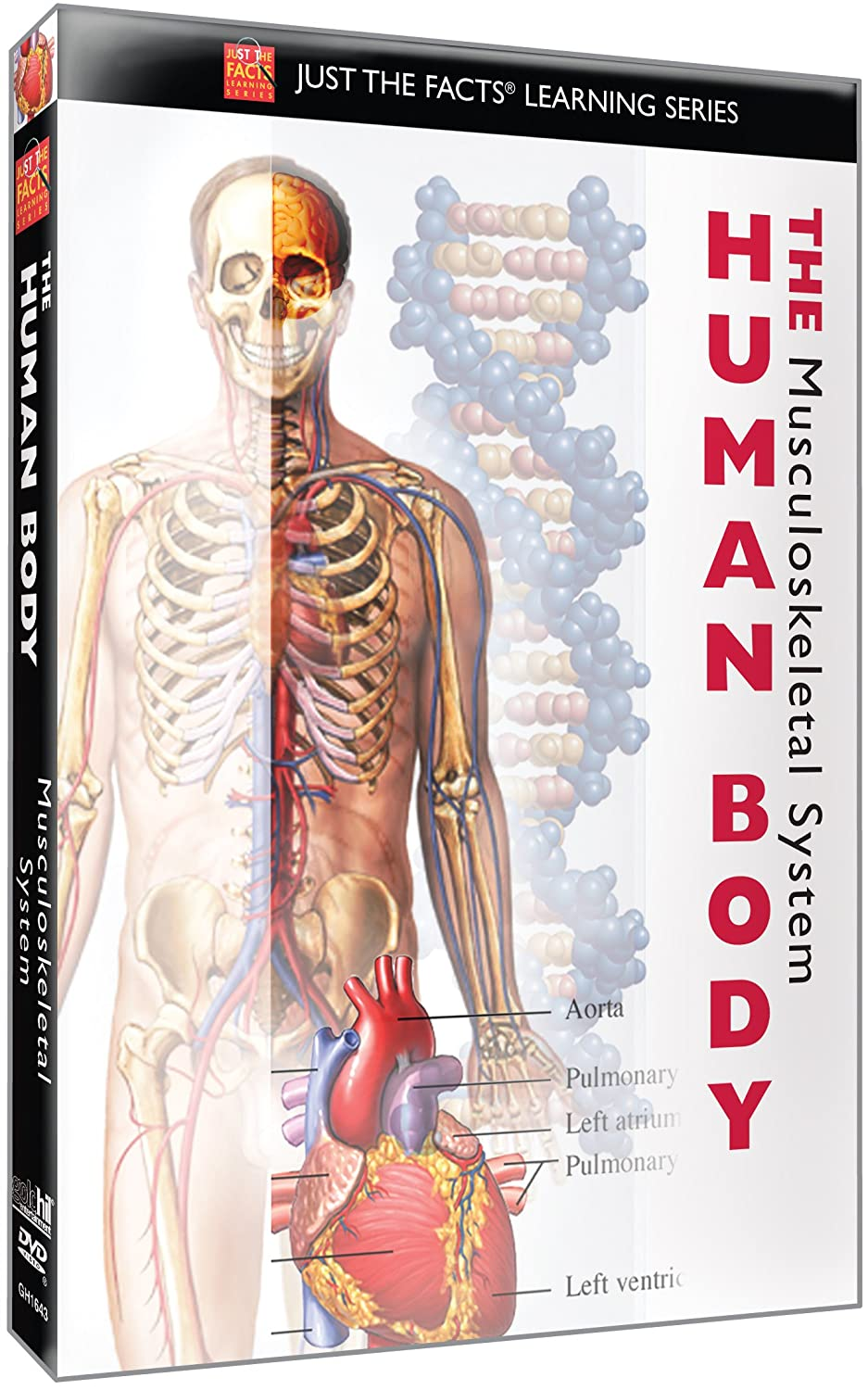 Amazon Just The Facts The Human Body Musculoskeletal Just