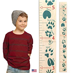 Headwaters Studio Animal Tracks Wooden Ruler Growth Chart (Green)