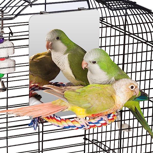 Bird Mirror,Cockatoo Playground,Parrot Ladder,Parakeet Sun Bath,Perch Platform Stand,Bird Perches for Parrots Stand Wooden Play Toys for Budgies,Cockatiel,Conure,Finch Lovebird by BLSMU