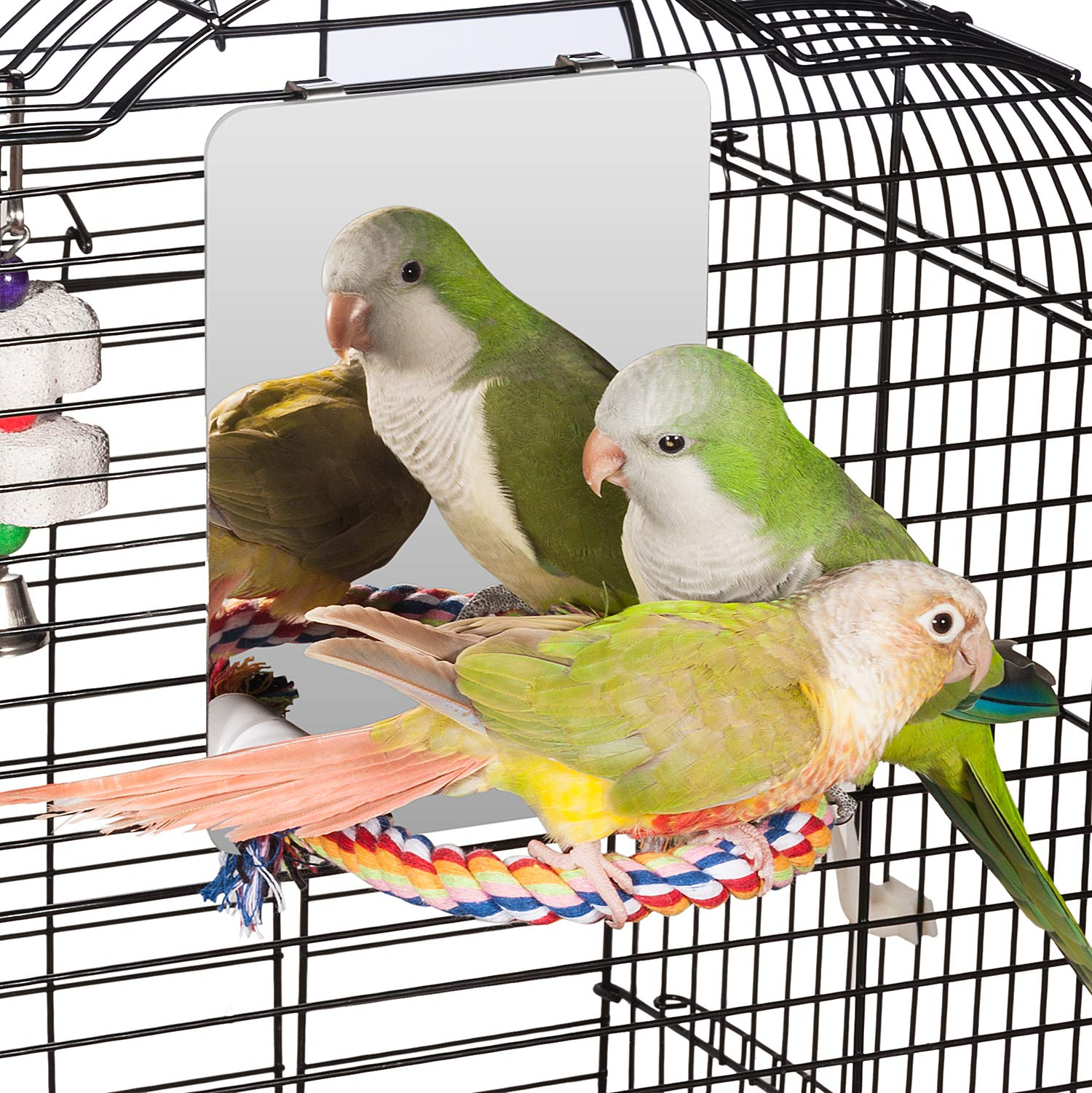 Colorday 7 inch Stainless Steel Bird Mirror with Rope Perch, Bird Toys Swing, Comfy Perch for African Grey Parakeet Cockatiel Conure Lovebird Finch Canaries by Colorday