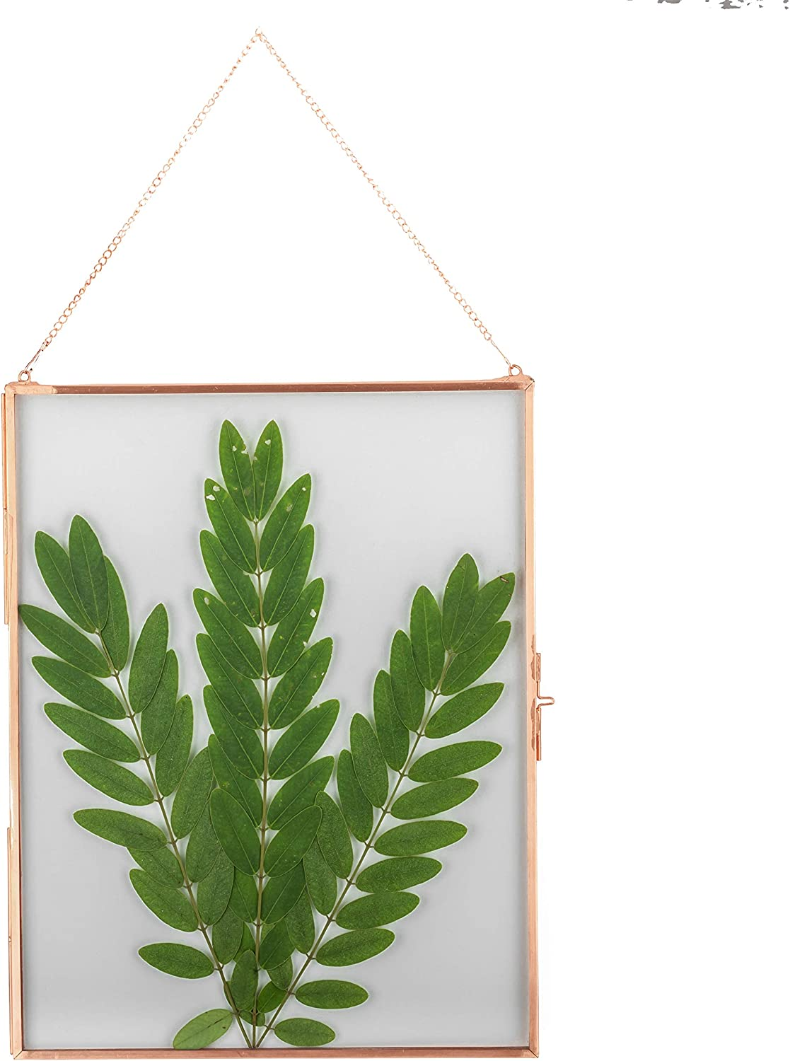 NCYP 14x11 Hanging Glass Floating Frame for Artwork Certificate Photo Picture Display, Large Pure Copper Ornament Plant Specimen Clip, Wall Vertical Decor Rose Gold Card Holder, Glass Frame only