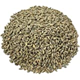 AA Plus Shop 100% Organic Rye Berries, Certified and Non-GMO, 5 lbs sealed bag