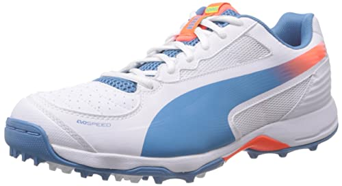 Puma Men s Evospeed Cricket Rubber 3.2 White Sport Cricket Shoes - 6  UK India ( 5df71428f