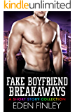 Fake Boyfriend Breakaways: A Short Story Collection