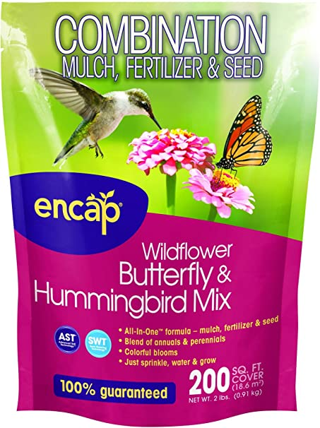 Amazon Com Encap 10810 6 Wildflowers Butterfly And Hummingbird