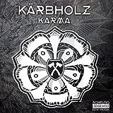Karma (Ltd.Blue Sky Vinyl+Mp3) [Vinyl LP]
