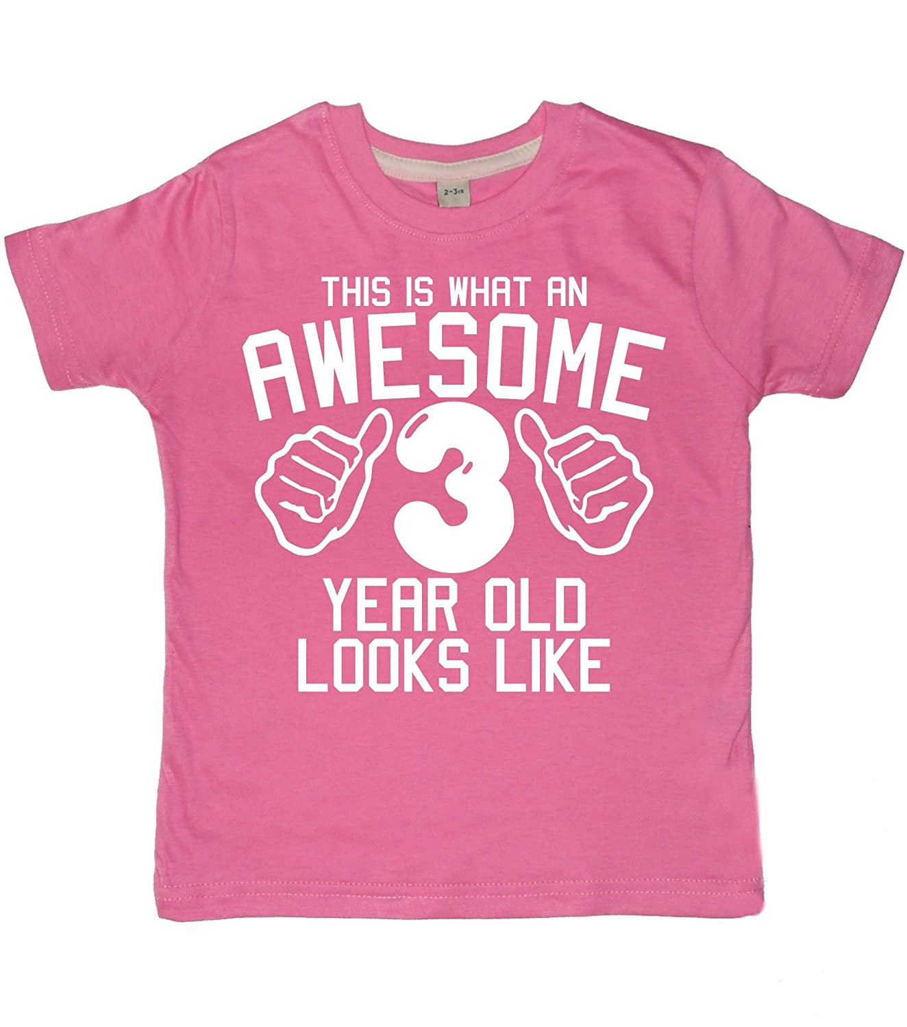 Edward Sinclair Little Girls' This is What an Awesome 3 Year Old Looks Like T-Shirt B00V3K4FDO