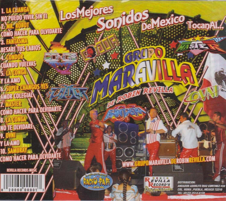 Los Mejores Sonidos De Mexico Tocanal. . . Groupo Maravilla ...