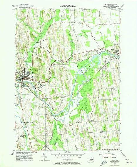 Amazon.com : YellowMaps Lyons NY topo map, 1:24000 Scale ... on