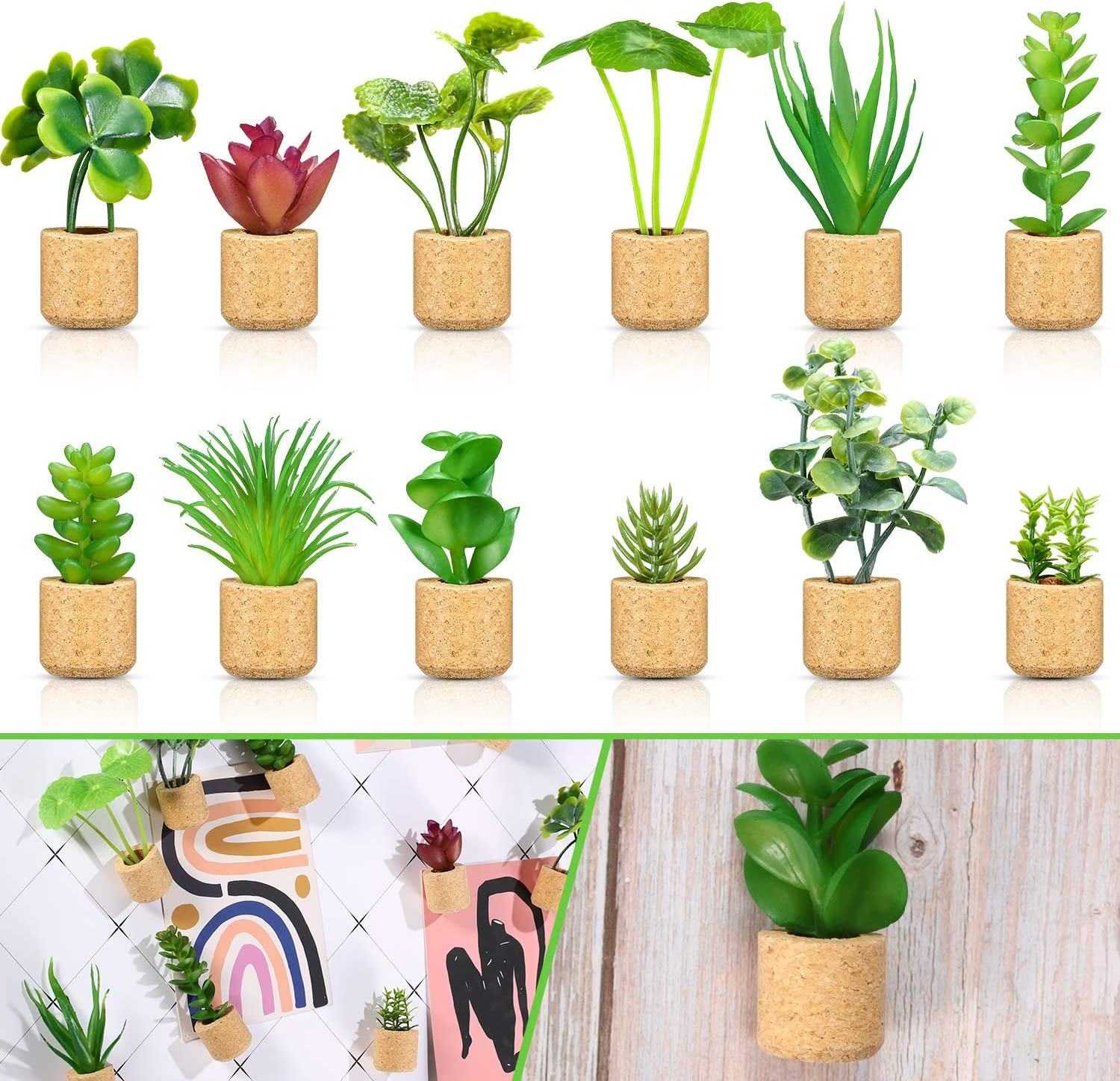 BBTO 12 Pcs Mini Artificial Succulent Plants Refrigerator Magnets for Shelf Kitchen Counter Office Decor Tiny Miniature Desk Plant Decoration (Wall Hanging or Lay Flat)