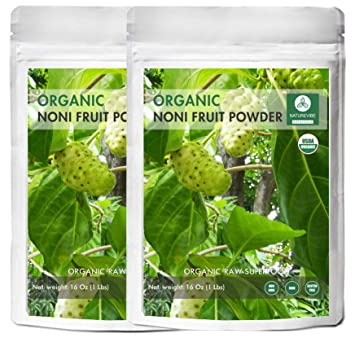 Amazon.com: Naturevibe Botanicals USDA - Polvo de fruta ...