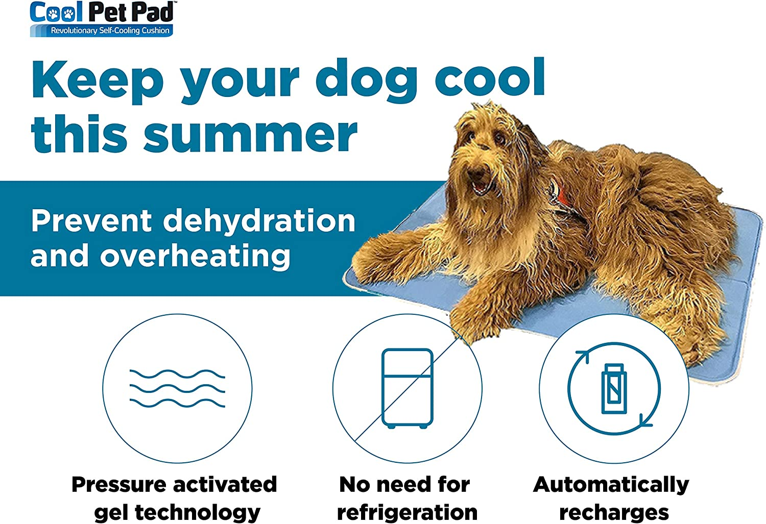 This Pet Cooling Gel Pad Keeps Dogs and Cats Cool in Warm Weather No Water or Electricity Needed Gel Self Cooling Mat for Dogs TheGreenPetShop Dog Cooling Mat Pressure Activated