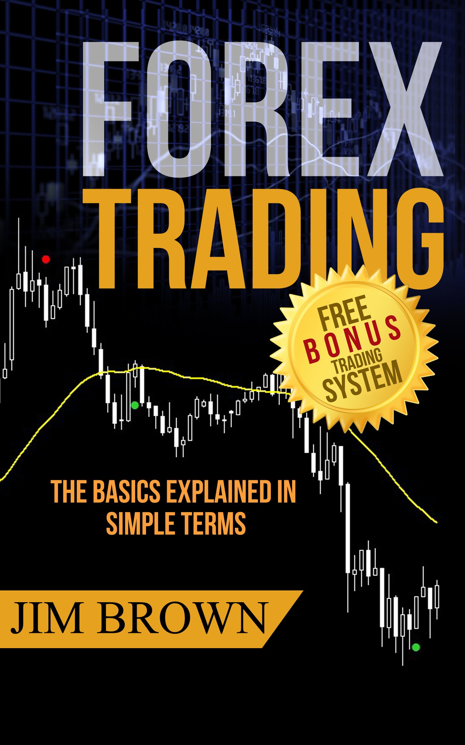 Forex Trading: The Basics Explained in Simple Terms (Bonus System incl. videos) (Forex Forex for Beginners Make Money Online Currency Trading Foreign ... Day Trading Book 1) (English Edition)