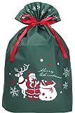 インディゴ クリスマス グリーティングバッグ4L サンタギフト ダークグリーン XG550