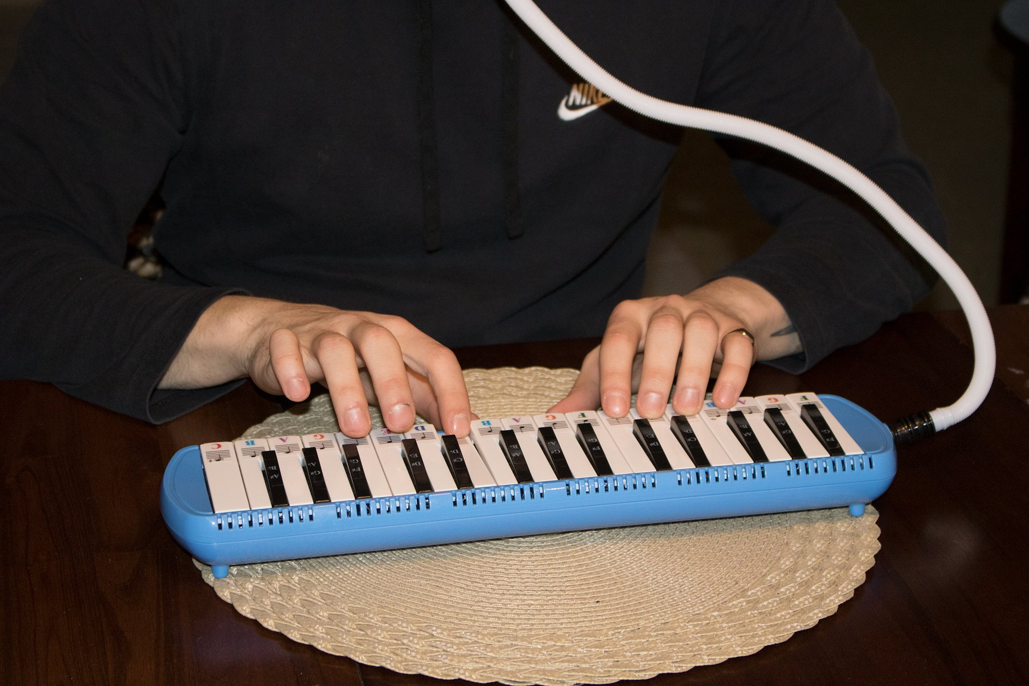 Melodica 32 Keys with Piano Stickers, Hard Cover Carrying Case, Mouthpiece, and Piano Ebook by QMG (Image #6)