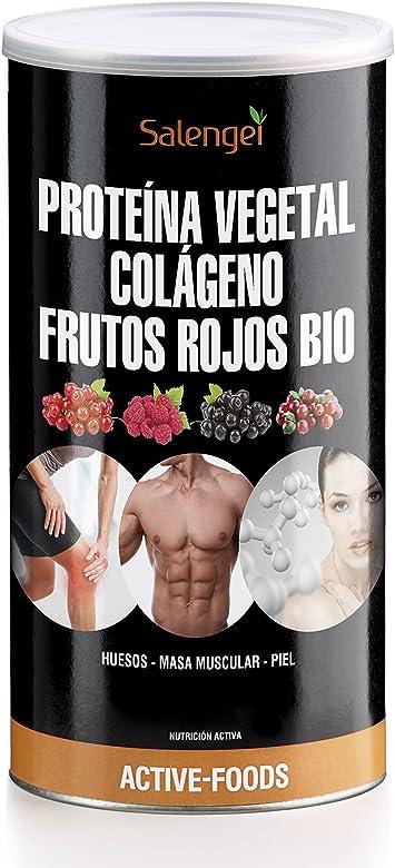 Active Foods Proteína Vegetal, Colágeno y Frutos Rojos - 500 ...