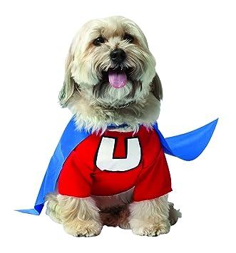 RASTA IMPOSTA - Disfraz para perro: Amazon.es: Productos para mascotas