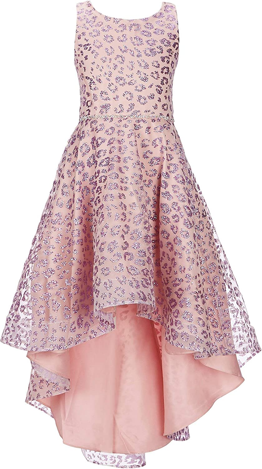 Rare Editions Girls Size 7-16 Lilac Pink Leopard Glitter Special Occasion Dress