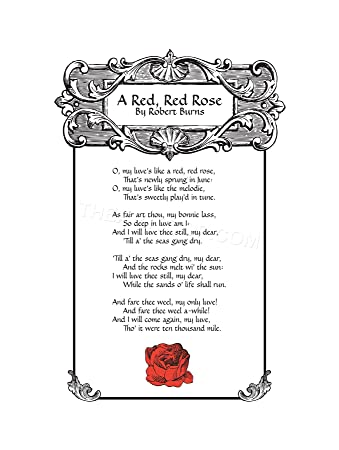 red red rose song