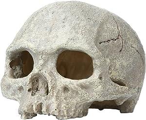 Saim Aquarium Decor Resin Emulational Skull Ornament