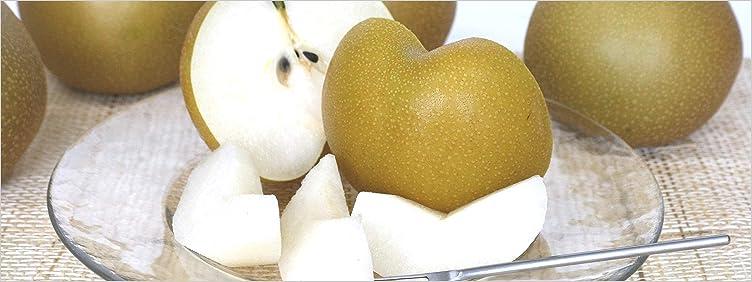 福島県産 旬のフルーツ