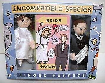 Amazon.com: incompatible especies VS. Novio de la novia ...