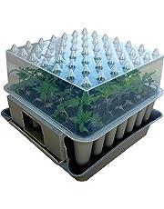 Agralan - MA100, Cassetta per la coltivazione di piantine, con 49 cellette
