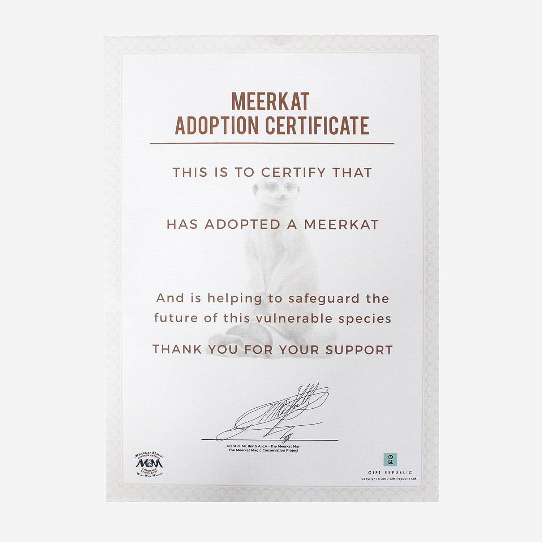 Gift Republic Adopt A Meerkat Gift Box Amazon Kitchen & Home