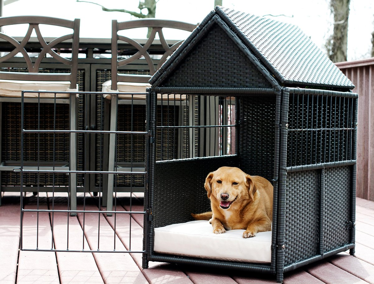 Iconic Pet - rattan Pet Crate with Storage, Brown/Sand by Iconic Pet (Image #2)