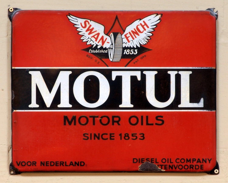 MOTUL 102787 Garden 4T SAE 30 1 litro - Aceite para Motor de ...