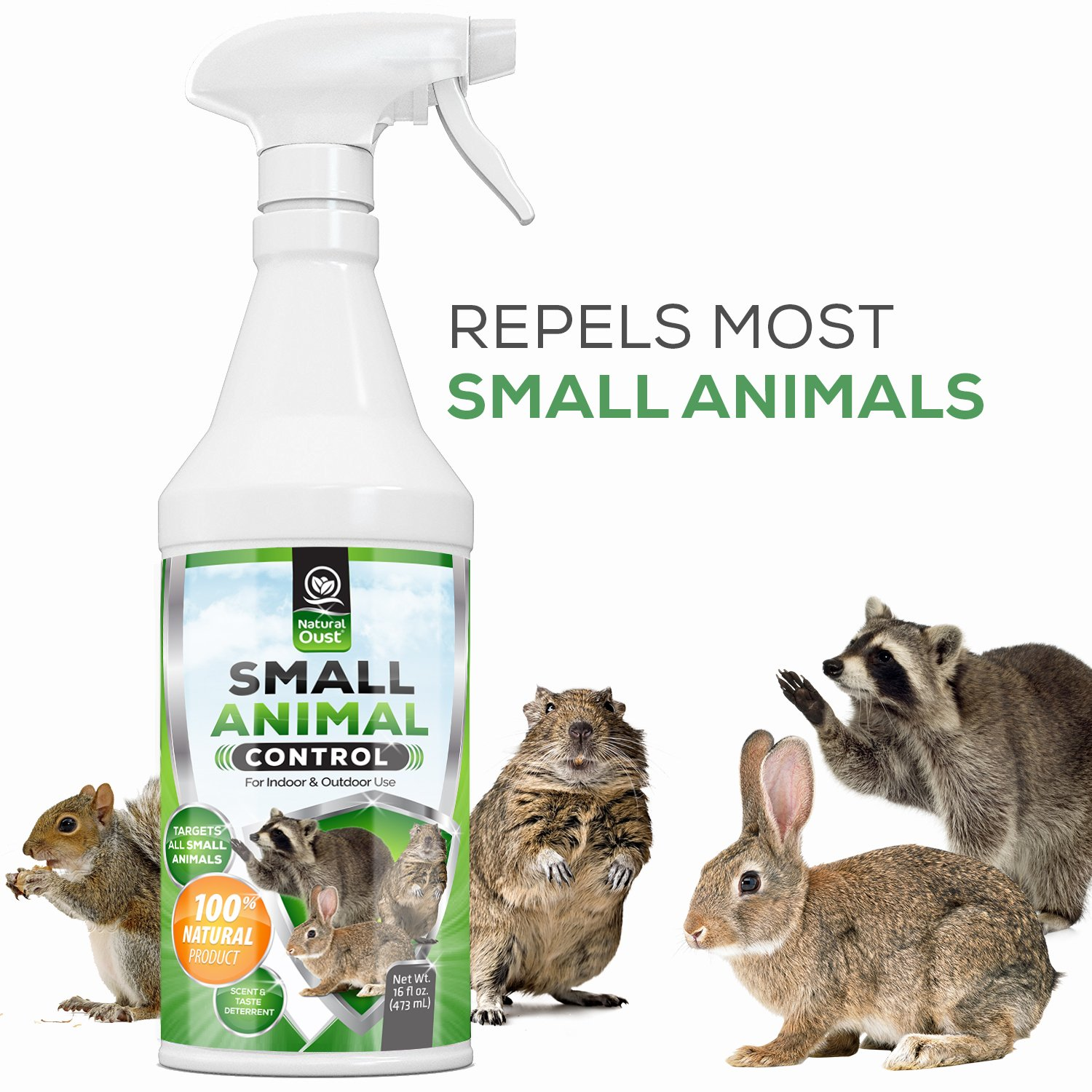Natural Oust Small Animal Repellent Spray | Natural, Cruelty Free Rodent Deterrent | Squirrels, Gophers, Rabbits, Mice, Rats, Raccoons | Indoor, Outdoor Use | Trash Cans, Garage, Attic, Garden
