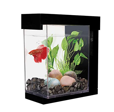 Marina Kit EZ Care Estilo Acuario para Betta 3,78 L