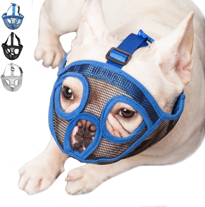 ILEPARK Bozal para Perros de Hocico Corto, Bozal Anti-Mordiscos y Ladridos, Máscara para Perros (M,Azul)