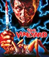 The Vineyard [Blu-ray/DVD Combo]