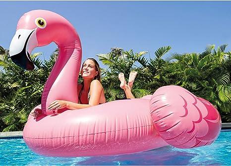 Amazon.com: Intex 56288 - Flotador hinchable de flamenco con ...