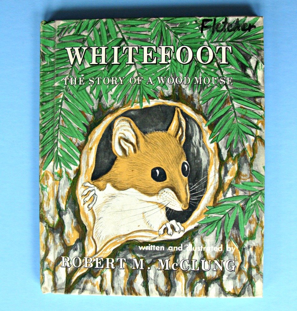 Whitefoot: The story of a wood mouse: Robert M McClung: Amazon.com: Books