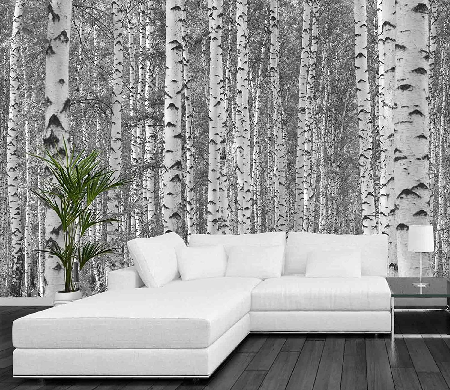 12 feet wide by 8 feet high prepasted robust wallpaper mural from prepasted robust wallpaper mural from a high resolution black and white photo of birch trees all our murals are easy to install remove and reuse hang