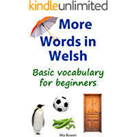 More Words in Welsh: Basic Vocabulary for Beginners (Learn Welsh Book 2) (Welsh Edition)