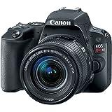Cámaras Canon US 24,2EOS Rebel SL2cuerpo con 7,6cm LCD, 18-55mm STM Kit, Negro