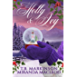 Holly and Ivy: A Lesbian Holiday Romance (English Edition)