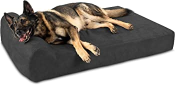 Big Barker 7Pillow Top Orthopedic Dog Bed