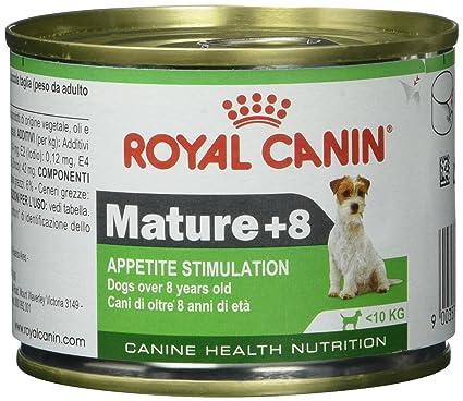 Royal Canin Comida para perros Mature +8 Wet